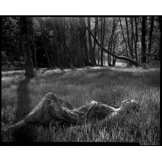 © Aurelien Le Duc